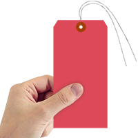 Red Cardstock Tags (with wires)