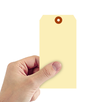 Manila 13-point Cardstock Tags