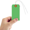 Dark Green Cardstock Tags (with wires)